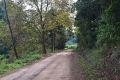 caminhada 2